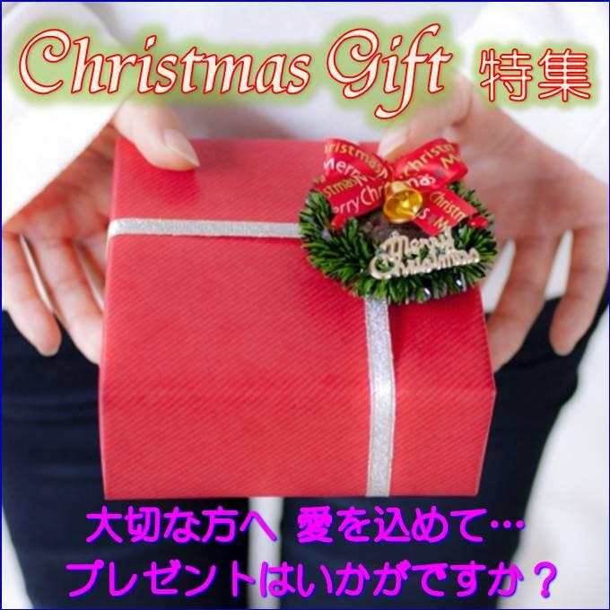 クリスマス プレゼント ギフト 彼氏 彼女 Aurora&Oasis オーロラ&オアシス